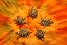 Sweetgrass Turtles